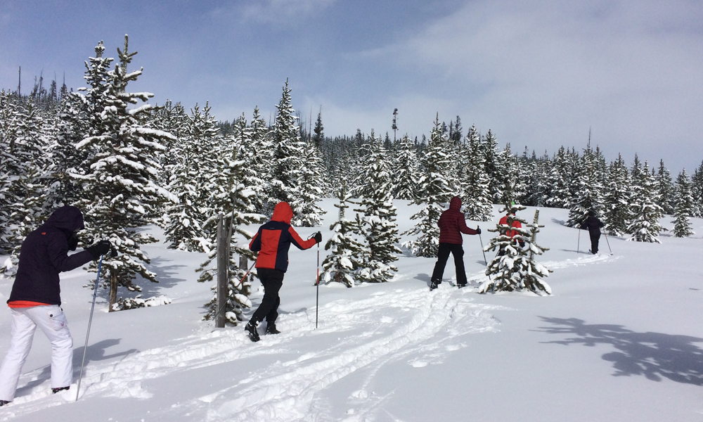 students cross country skiing during Winterim