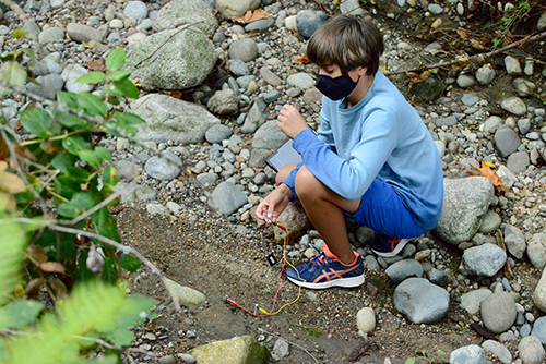 middle school student using microbit to test soil moisture